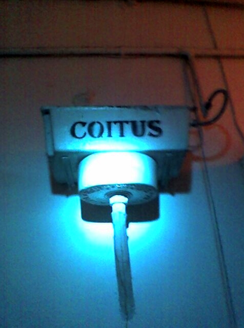 1.Coitu_S
